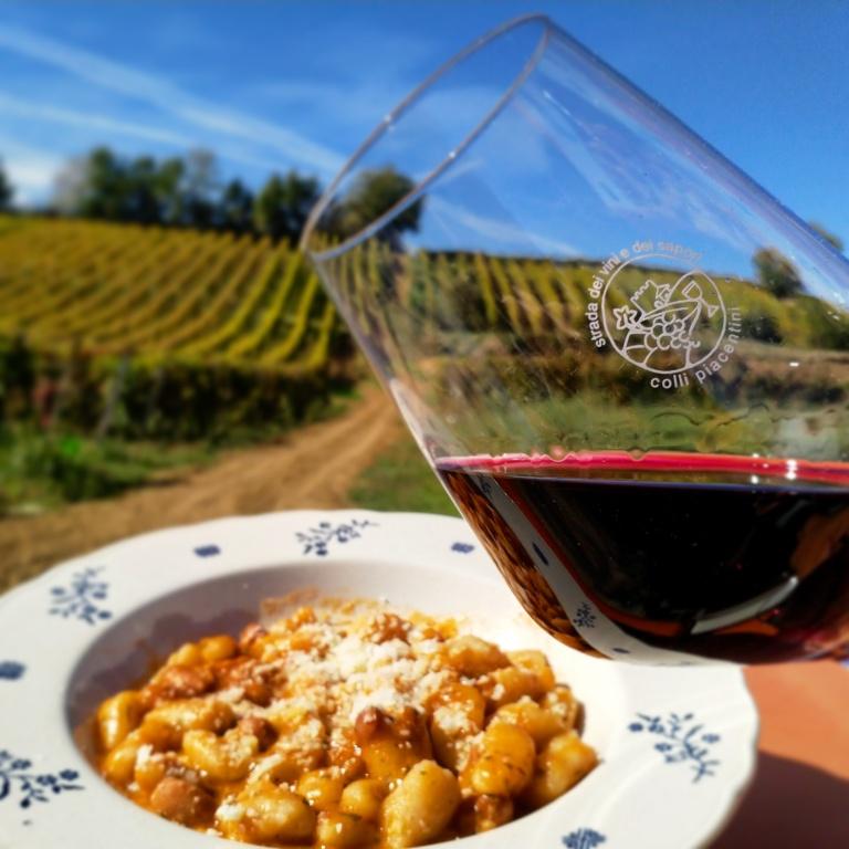 abbinamento vino rosso casa benna piacenza